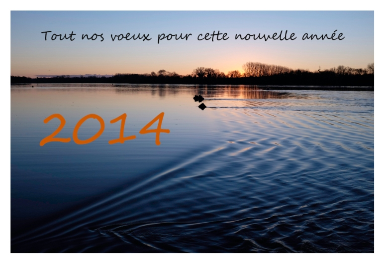 voeux 2014 1