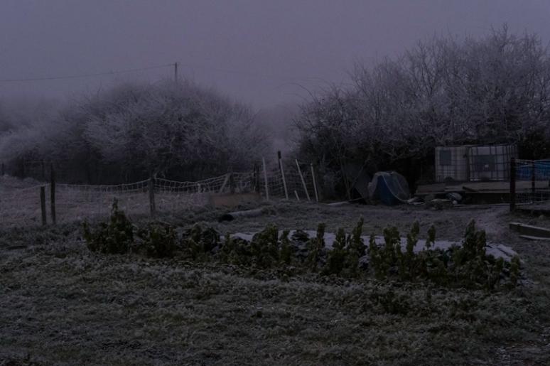 decembre-2016-129